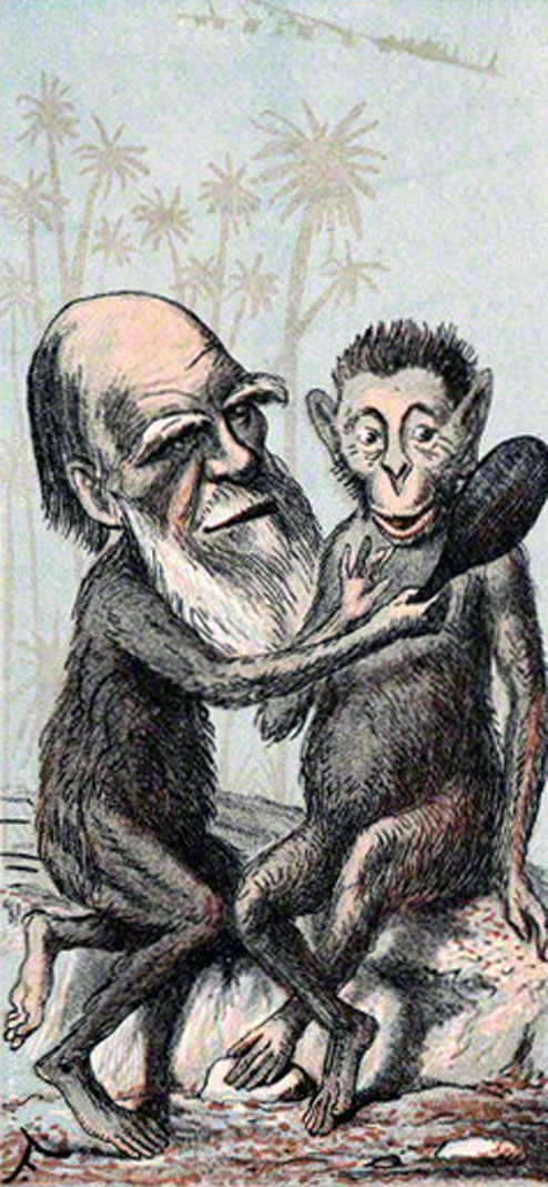 Charles Darwin as a monkey in The London Sketch-book (1874).