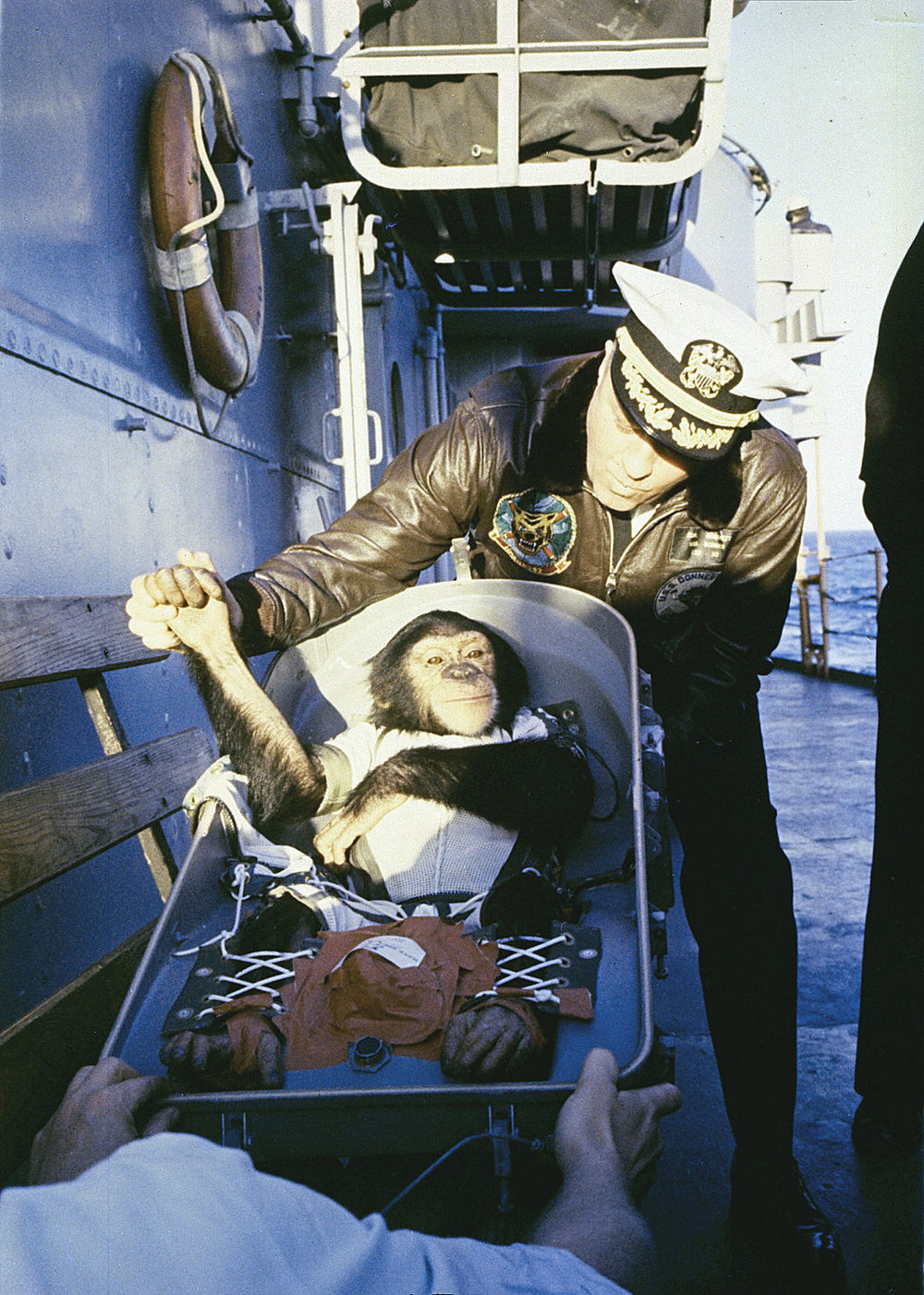 Ham the chimp is welcomed back with a 'handshake' after his January 1961 flight on the Mercury Redstone rocket.