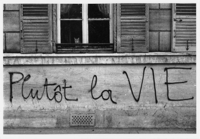 Grafitti_Mayo 68_4.jpg