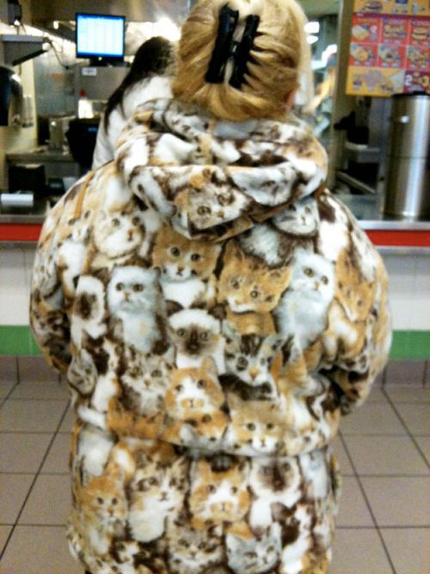 cat coat.jpg