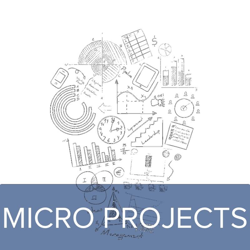 HomepageHeros-MICROPROJECTS.jpg