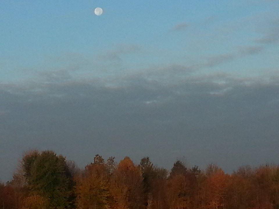 Morning Moon in Autumn.jpg