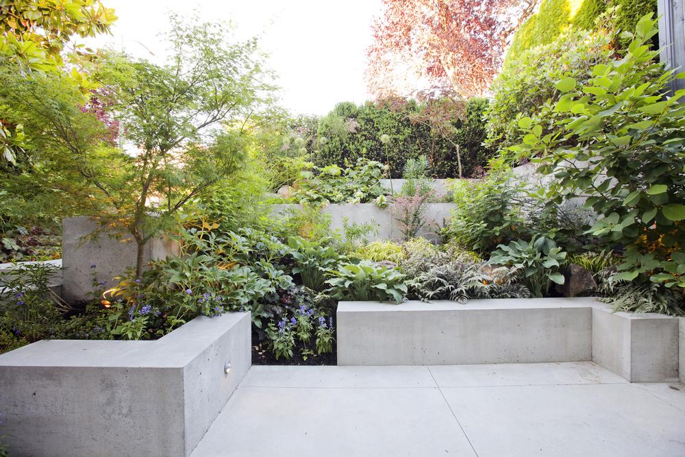 garden_4272.jpg