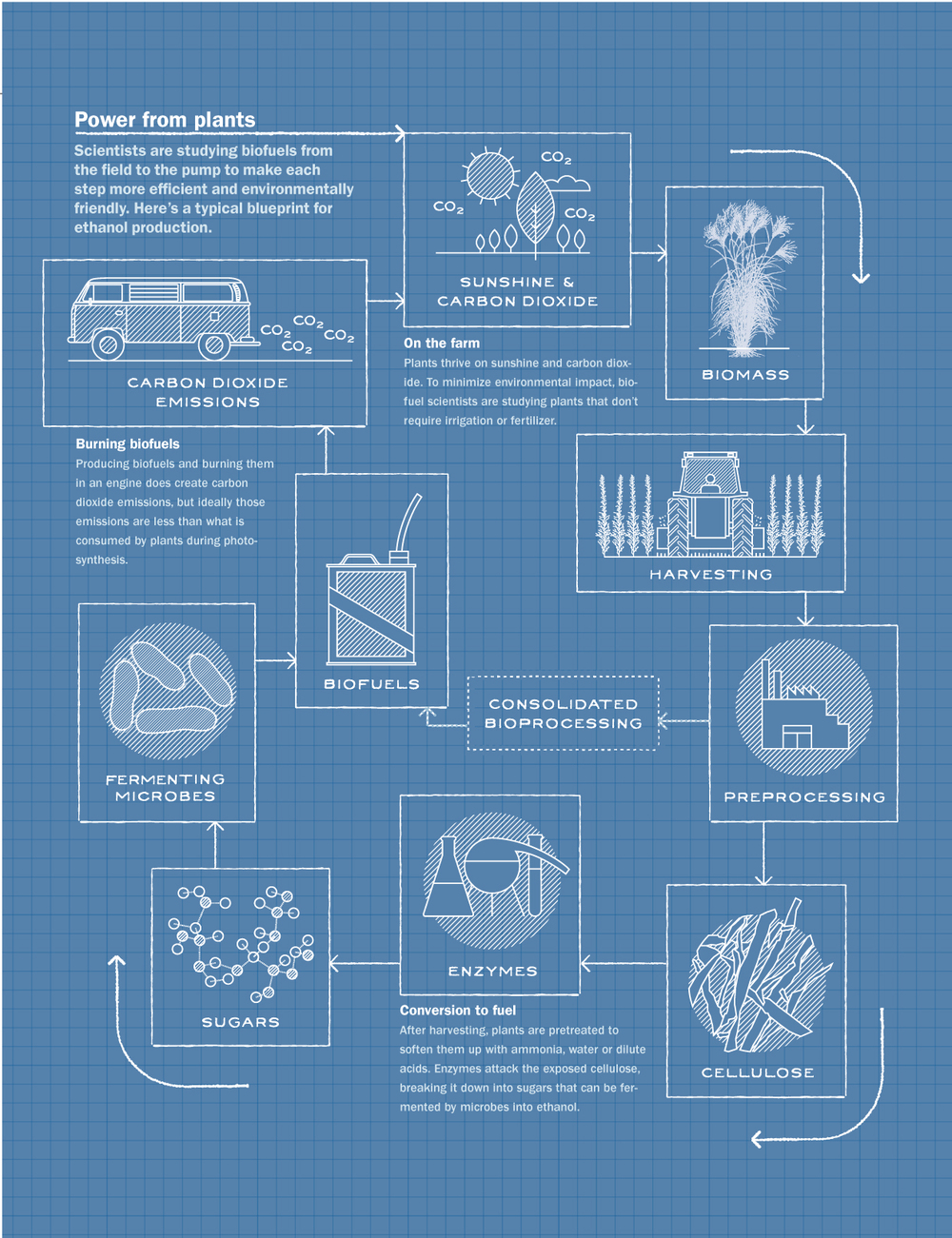 Science News Biofuels Information Graphic