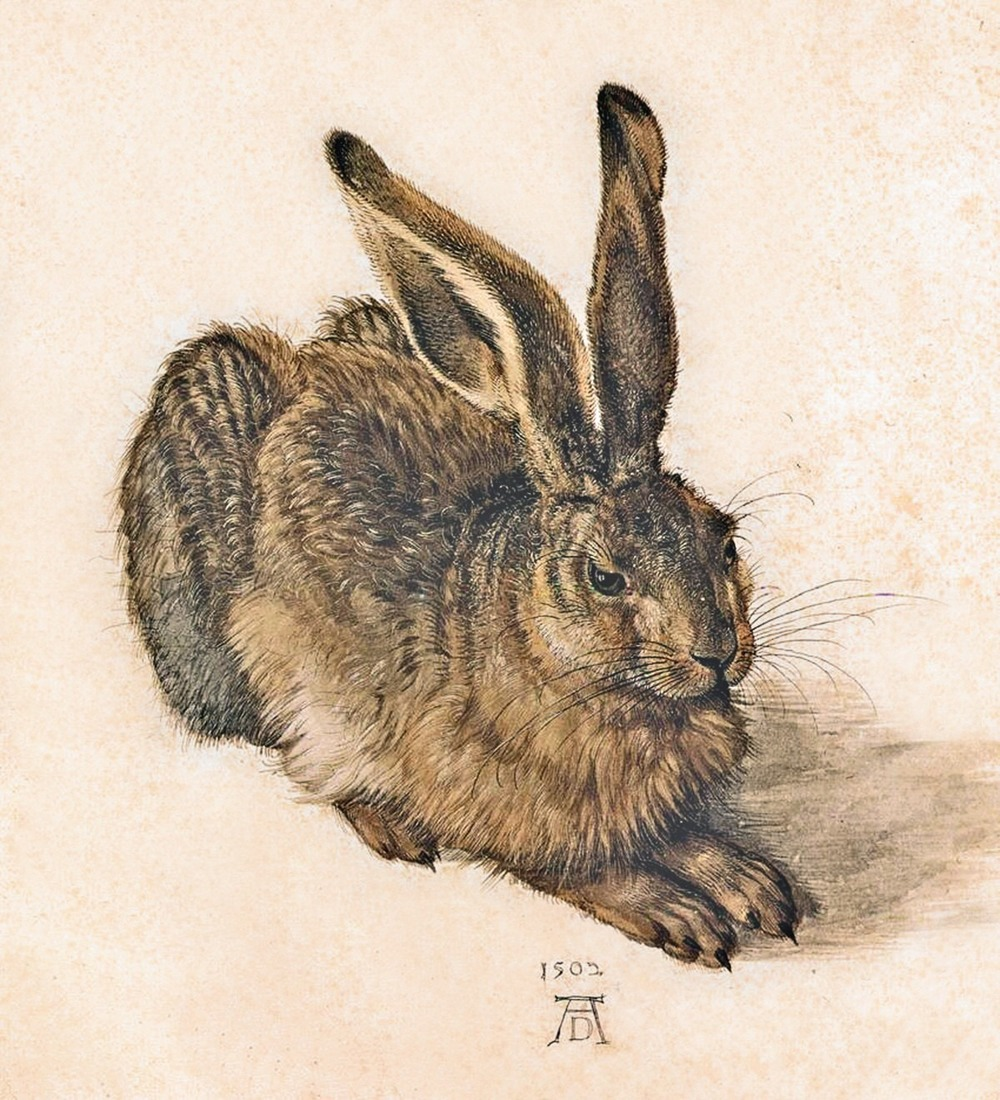 An exemplar of form: Rabbit, by the German Renaissance artist Albrecht Durer. The life of the rabbit leaps off the page and into our imagination, thanks to Durer's gift for expressing meaningful shapes.