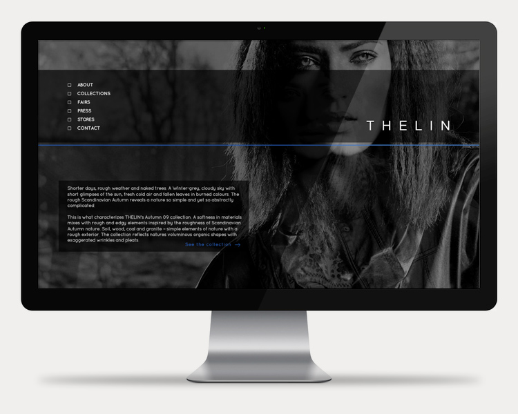 Thelin(750x600)Cinema.jpg