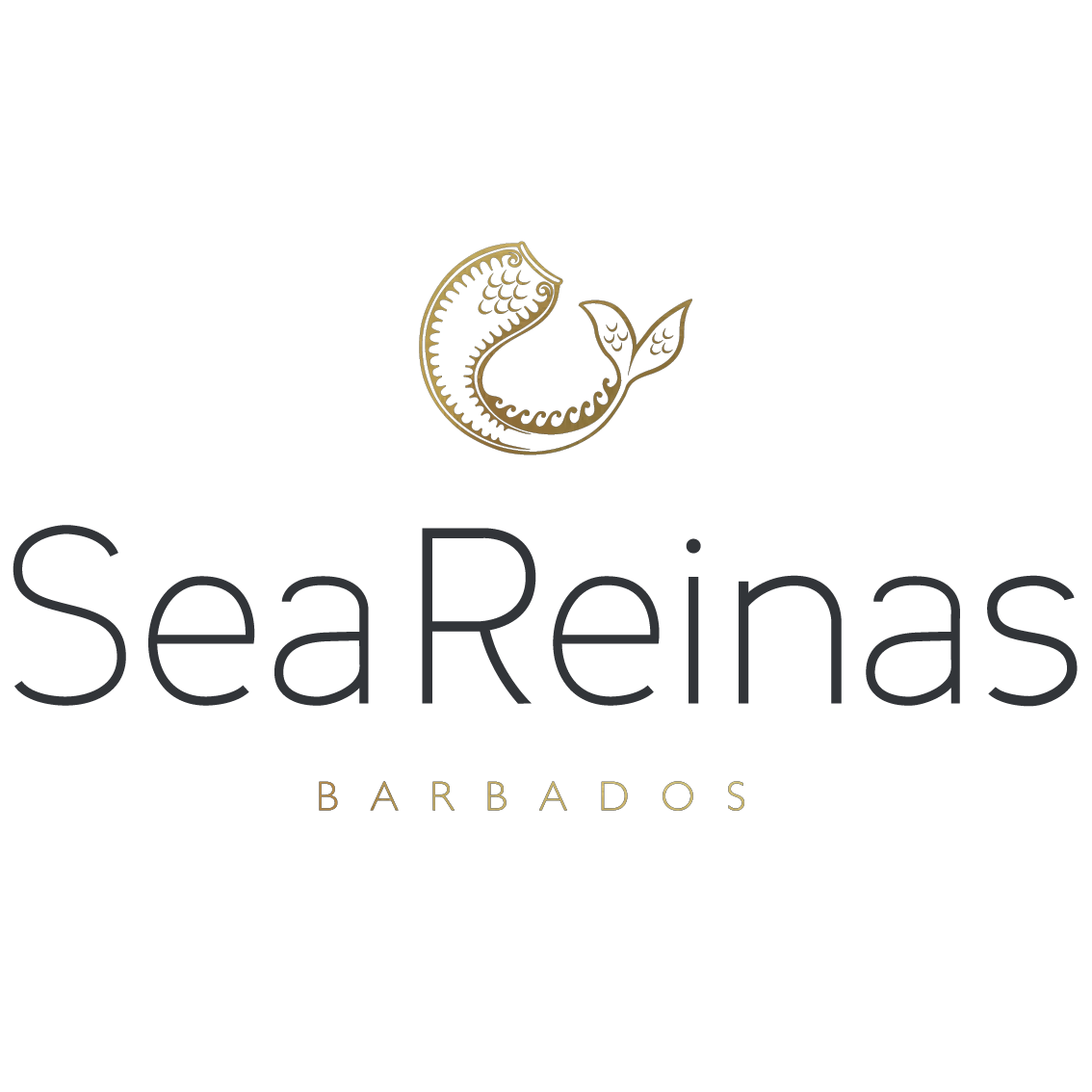 Sea Reinas® Swimwear Official | Swimsuits, Bikinis and Beach Accessories from Barbados