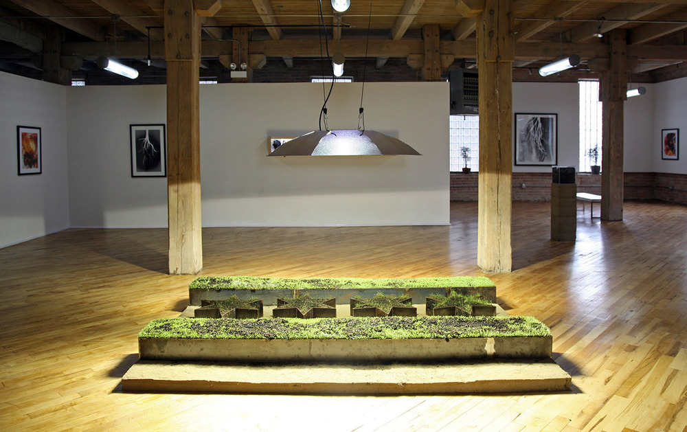 Field Work / Shikako Flag / Chicago Urban Art Society