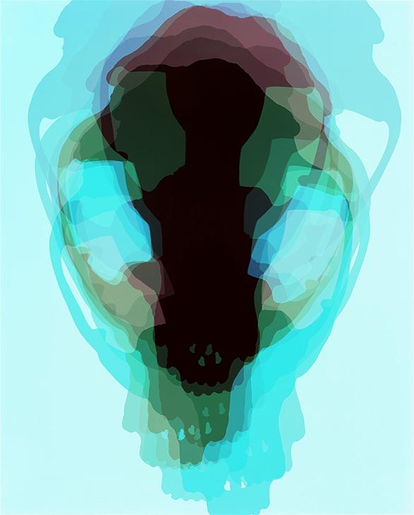 Skull, Fox