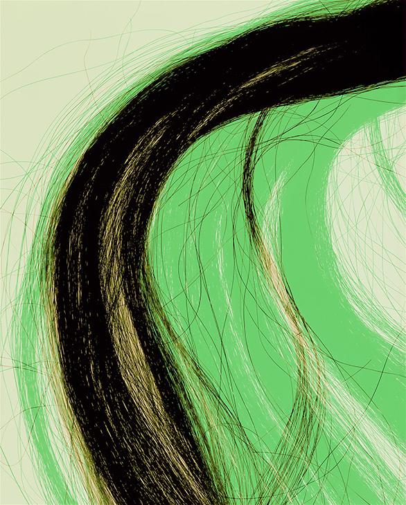 Hair, Horse