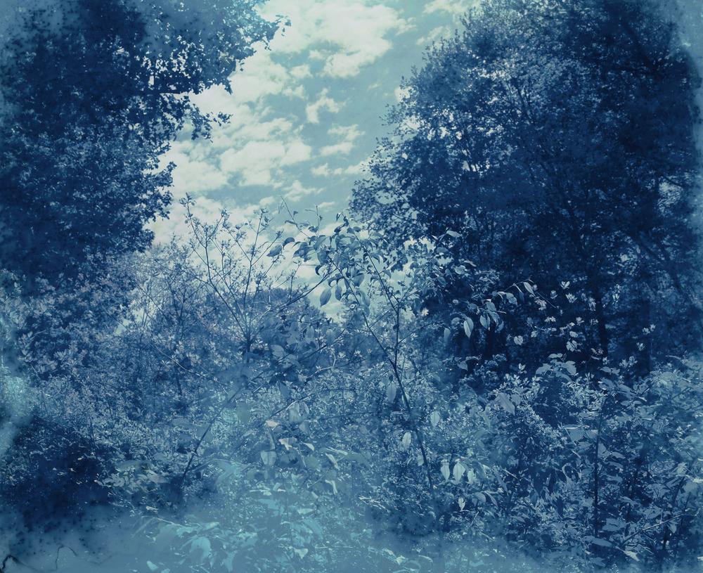 """Twilight No. 2 / 58"""" x 71"""""""