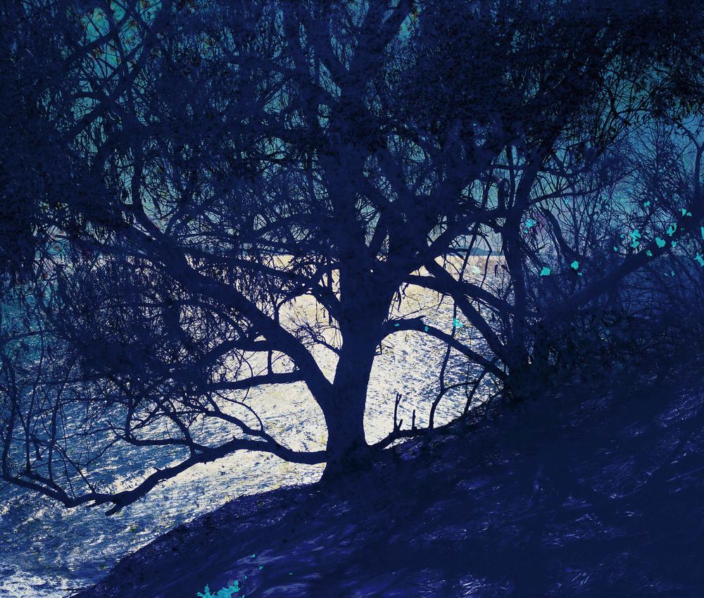 """Twilight No. 1 /25.5"""" x 30"""""""