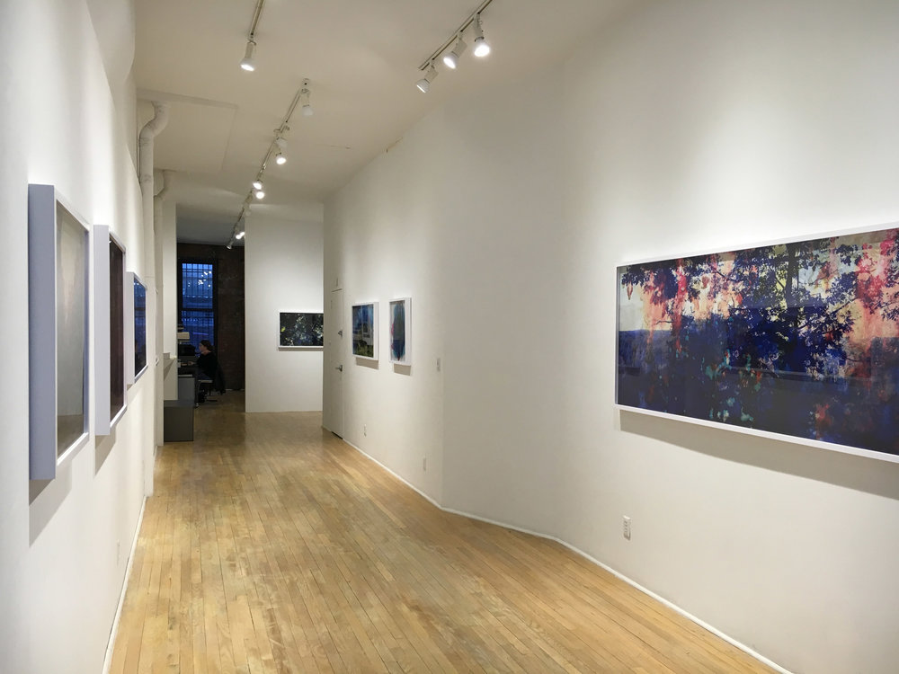 Creative Destruction / Sasha Wolf Gallery / NYC