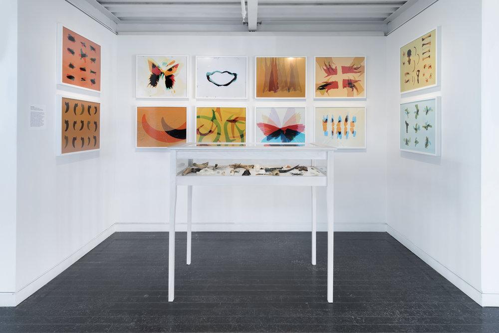 Broken Cabinet / Elmhurst Art Museum / Illinois