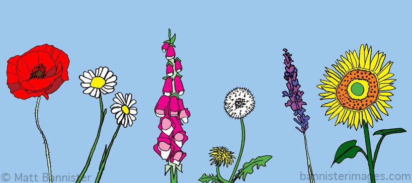 Design for garden mural