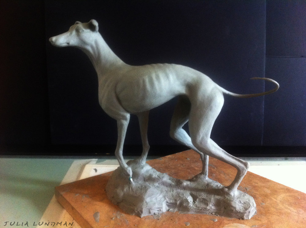 julia-lundman-lundman-greyhound1.jpg