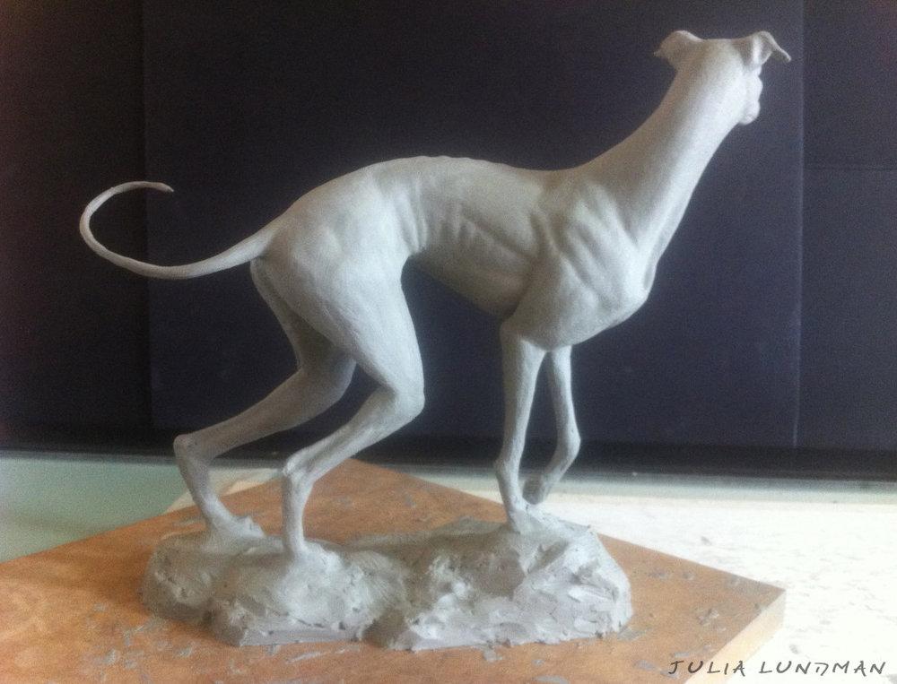 julia-lundman-lundman-greyhound2.jpg