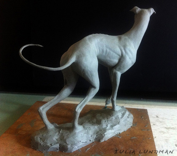 julia-lundman-lundman-greyhound3.jpg