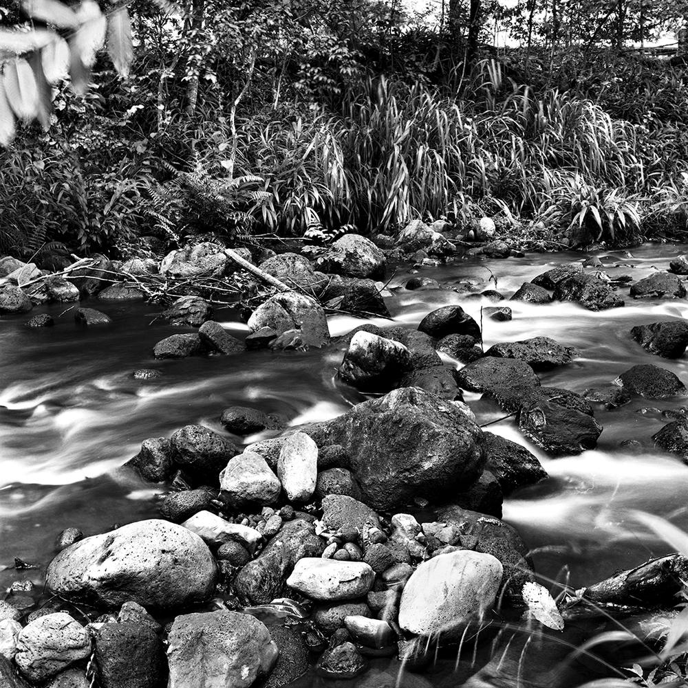 6 Waipio Stream 01.jpg