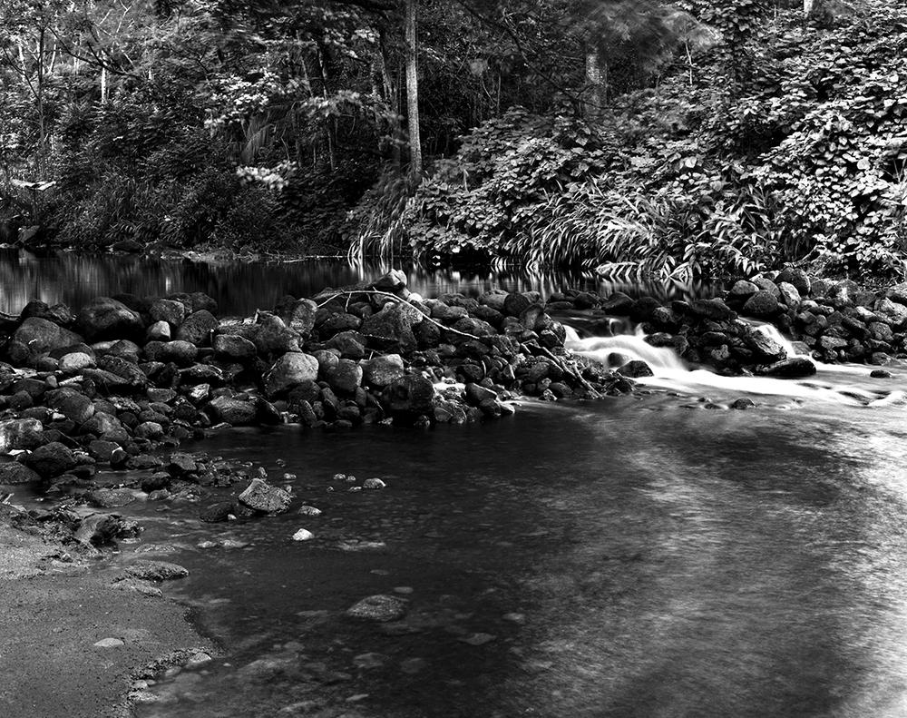 14 Waipio Stream 02.jpg