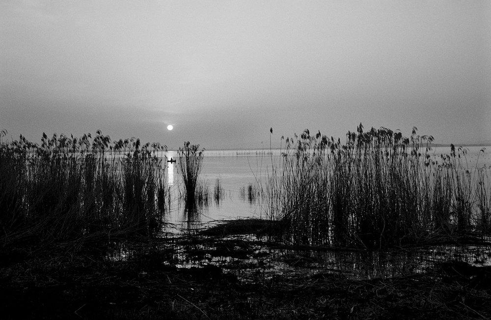 Lake Biwa Study 01.jpg