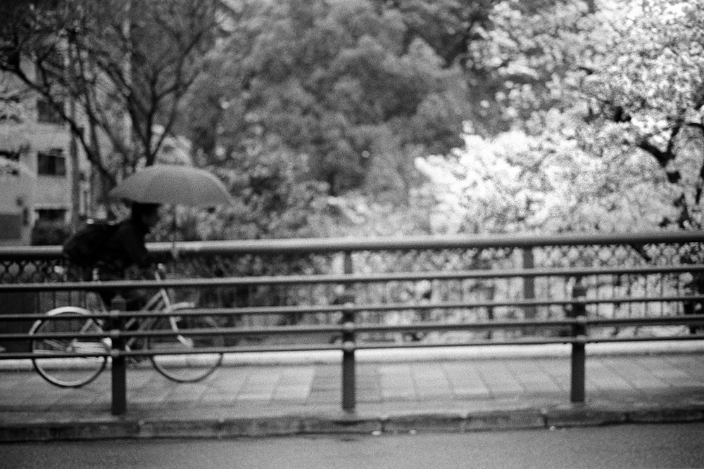 Osaka Study 10.jpg