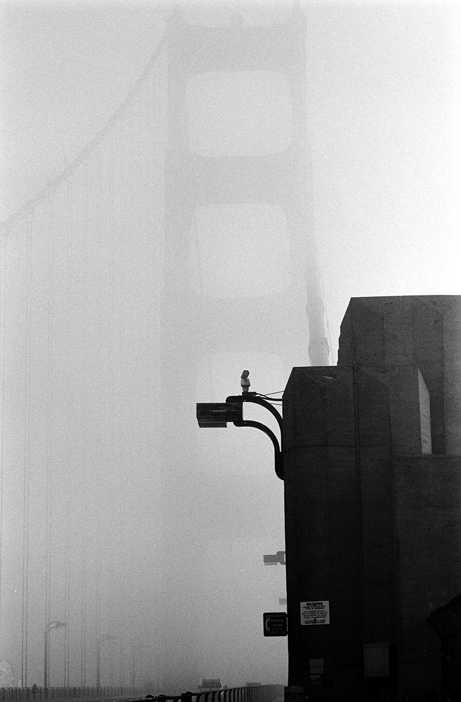 (22) Golden Gate Bridge Study 45.jpg