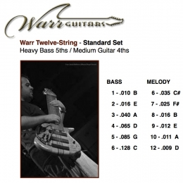 Order Strings for your Warr Guitar directly from the WarrSTORE! Note: All String Set covers are located on the store site and lists all the string gauges and tuning for any given string set ordered.