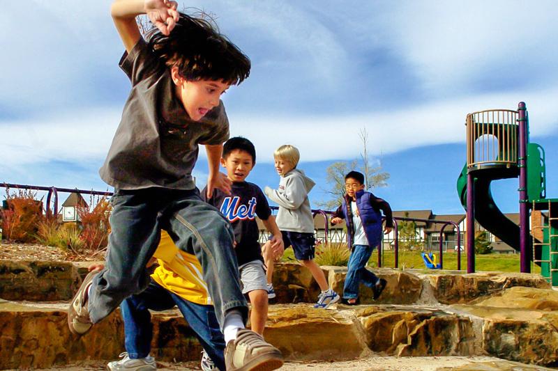 Learning Landscapes | Denver Public Schools