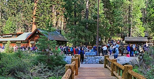 Giant Forest Visitor Center | Sequoia National Park