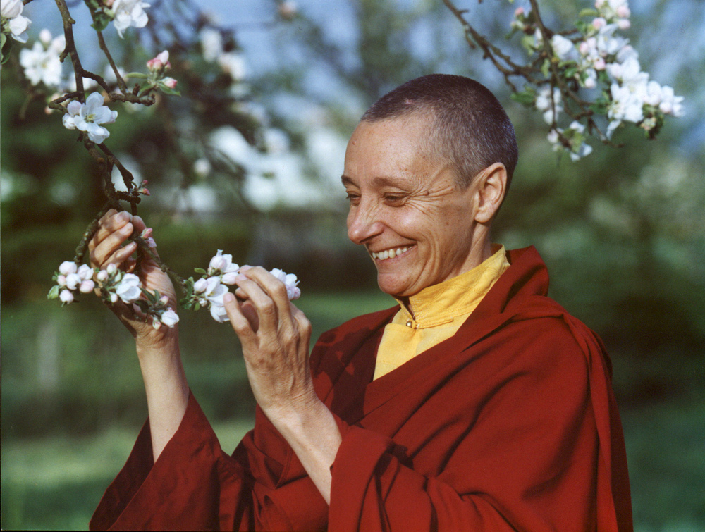 Jetsunma Tenzin Palmo on a spring tour in Europe