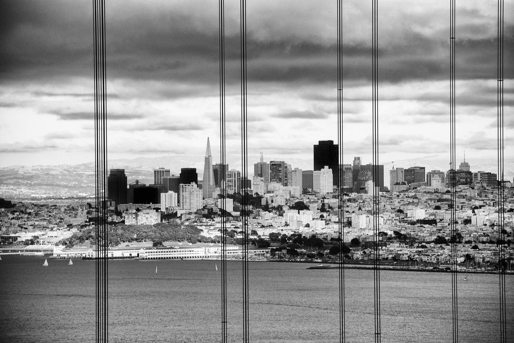 San_Francisco_Wedding_Photographer_Sees_The_Day_007.jpg