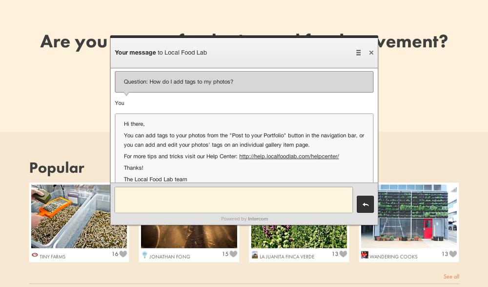Live-chat conversation dialogue box