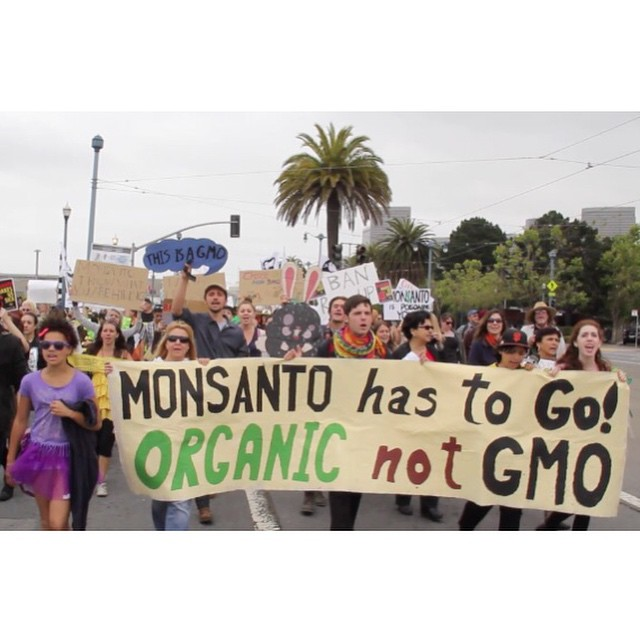 Protesters in San Francisco joined tens of thousand of people across the world to march against Monsanto.  Watch our 2 min. [VIDEO] news coverage including this story. Link in bio.  Subscribe to our YouTube channel for more original news and analysis from across the food system.  #GMO #Monsanto #Occupy