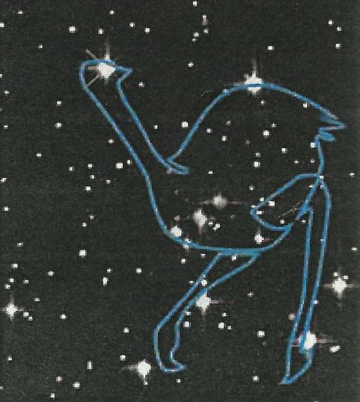 australia astronomy -#main