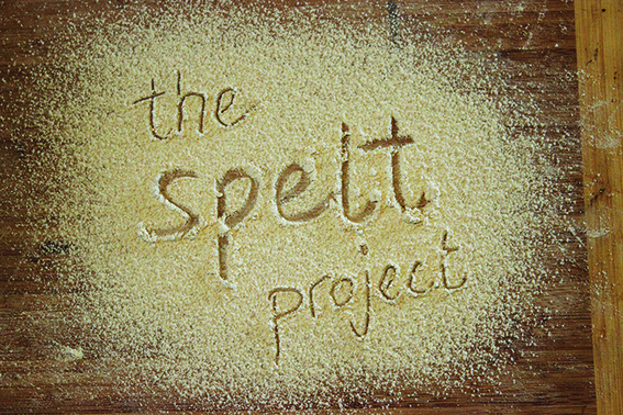 17967424_the spelt project