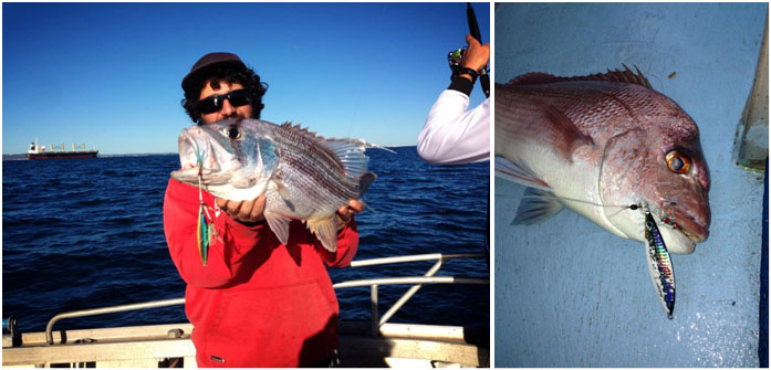 Photo's from Abrolhos Jigs