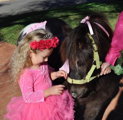 Hop-Upon-A-Pony 5.png.jpeg