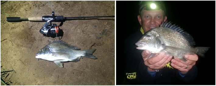 DAMO AND CRAIG FISHING 4LB HAVING A PRODUCTIVE NIGHT CATCH AND RELEASE SESSION WITH 6 FISH ALL OVER THE 30CMS