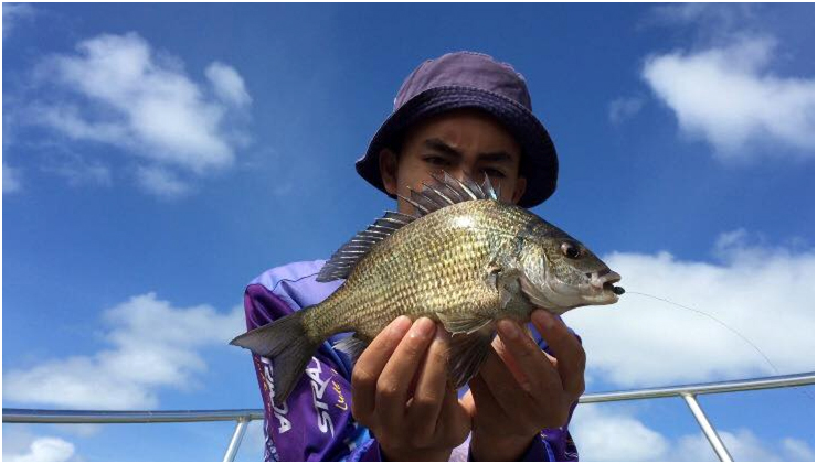 TACKLE WORLD PRO ANGLER SHIDDIQ WITH A NICE BLACK BREAM CAGHT AT GREENOUGH RIVER ON SOFT PLASTICS