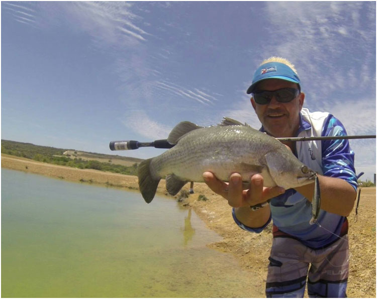 CRAIG WITH A NICE CHAPMAN VALLY FISHING PARK BARRA
