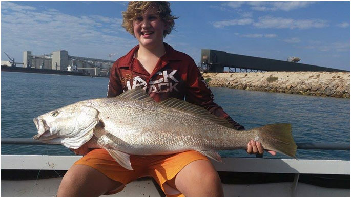 MY SONS PB MULLOWAY WHICH HE MANAGED TO GET ON A LIVE YELLOW TAIL THAT HE CAUGHT ON A MICRO JIG