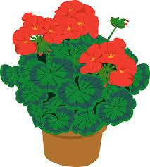 RUKPA Plant Sale