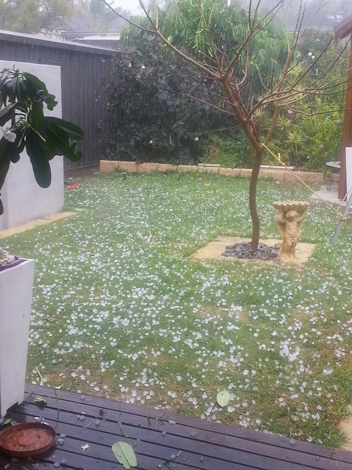 Hail Storm Hits Drummond Cove at 3.50pm Thursday 26th March. - Sharon
