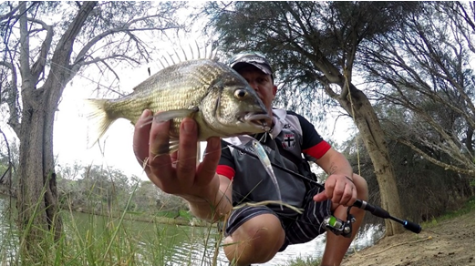 THIS BREAM SMASHED THIS ZEREK FLASH MINOR BEFORE IT COULD HIT THE BOTTOM