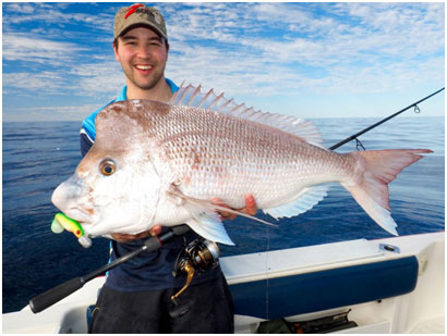 "LUKE RYAN WITH AN IMPRESSIVE HONKER SNAPPER TAKEN ON THE ZMAN 6""SWINNERZ"
