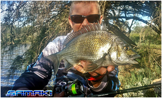 TACKLEWORLD PRO STAFFER CRAIG WITH A 35CM BREAM TAKEN ON THE ZMAN SLIM SWIMZ