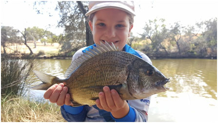 SUNNY WITH THE MAGIC 40CM BREAM THE SMILE SAYS IT ALL