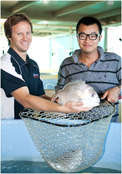BCMI lecturer Ben Byrne and student Joseph Kong with a fish bred at the research, development and training facility.
