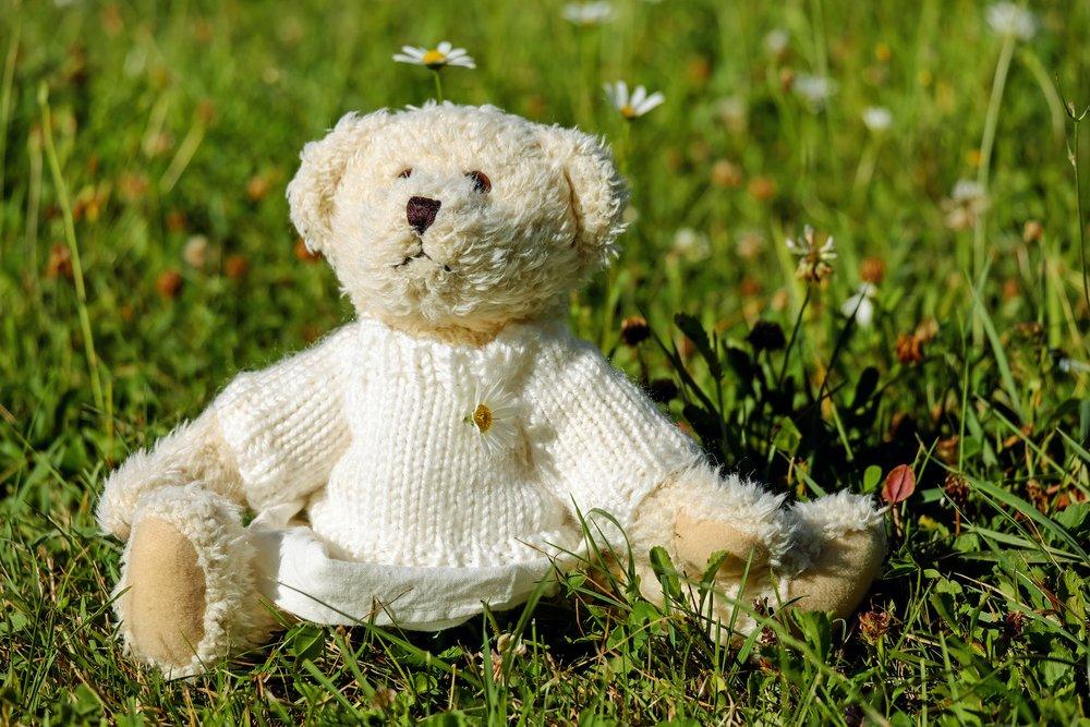 Teddy Bears Picnic.jpg